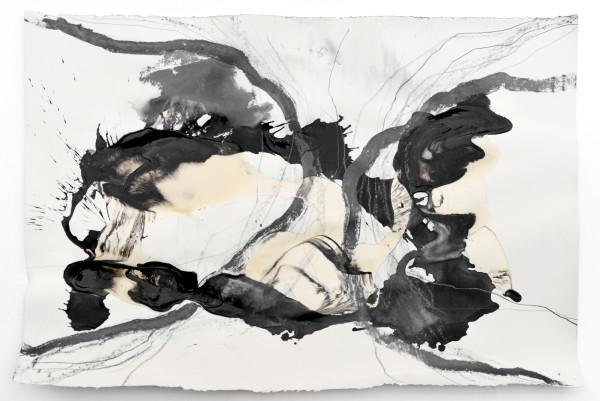 07_Entfaltungen IV, Graphit und Tusche auf Papier, 50 x 80 cm, 2018r_web
