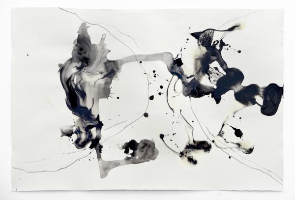 08_Entfaltungen V, Graphit und Tusche auf Papier, 50 x 80 cm, 2018