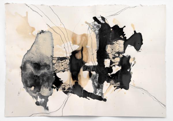 09_Entfaltungen VII, Graphit und Tusche auf Papier, 50 x 80 cm, 2018r